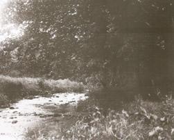 Glenavy River