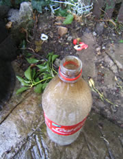 A close-up of the plastic bottle