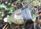 Another plastic bottle adapted for drug use found lying with a cigarette lighter on the Armstrong (of Cherry Valley) grave