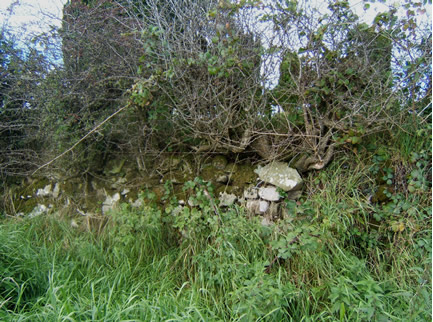 Tullyrusk Graveyard Stones